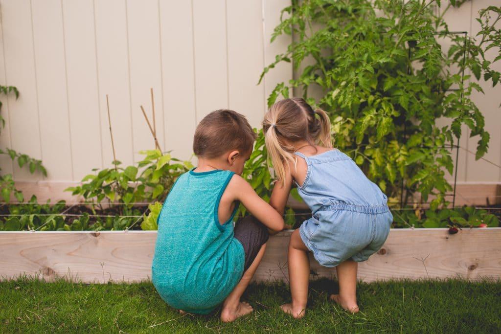 Créer un potager pour vos enfants