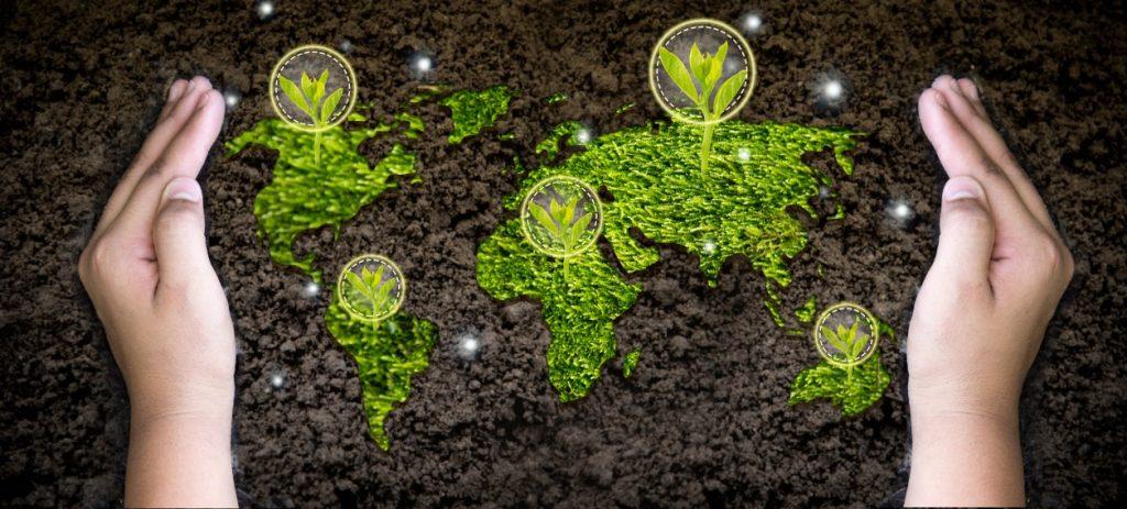 Quels sont les enjeux du développement durable ?