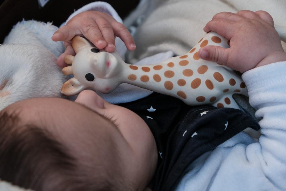 Comment bien nettoyer Sophie la girafe ?